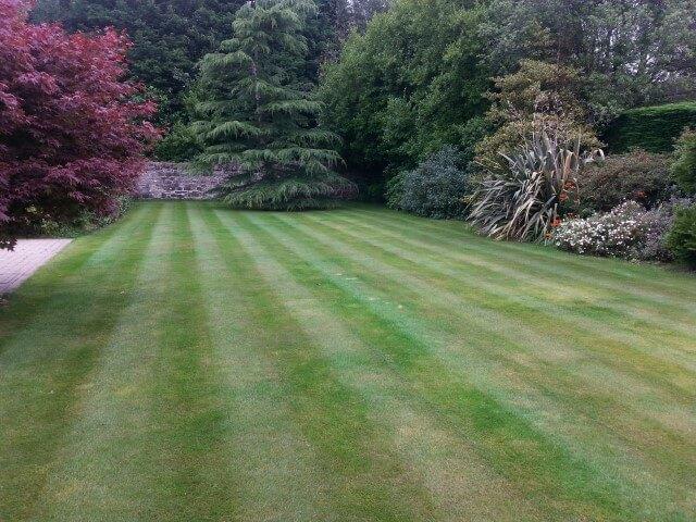 Cultra lawn