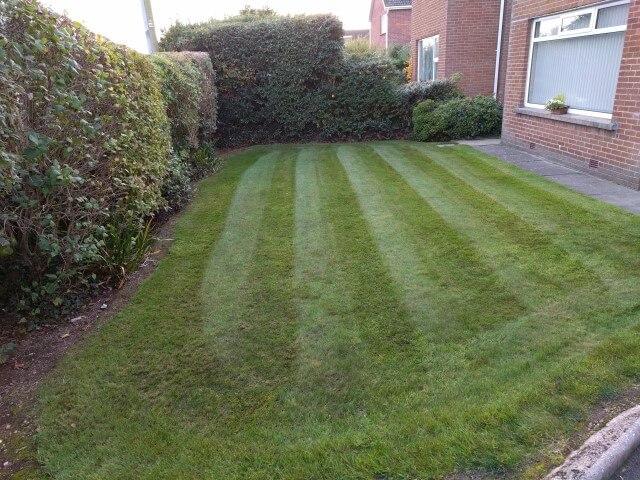 greenisland grass cutting