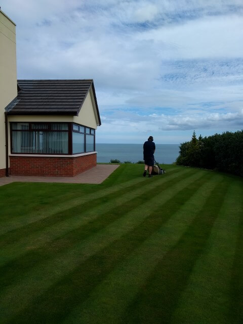 guy cutting strippy lawn