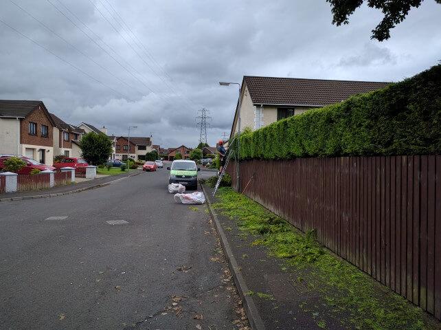 man cutting hedge