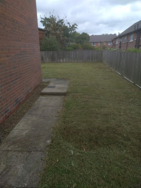 tidy side lawn