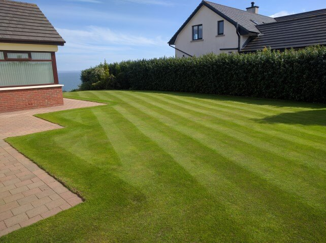 mow stripes in your lawn