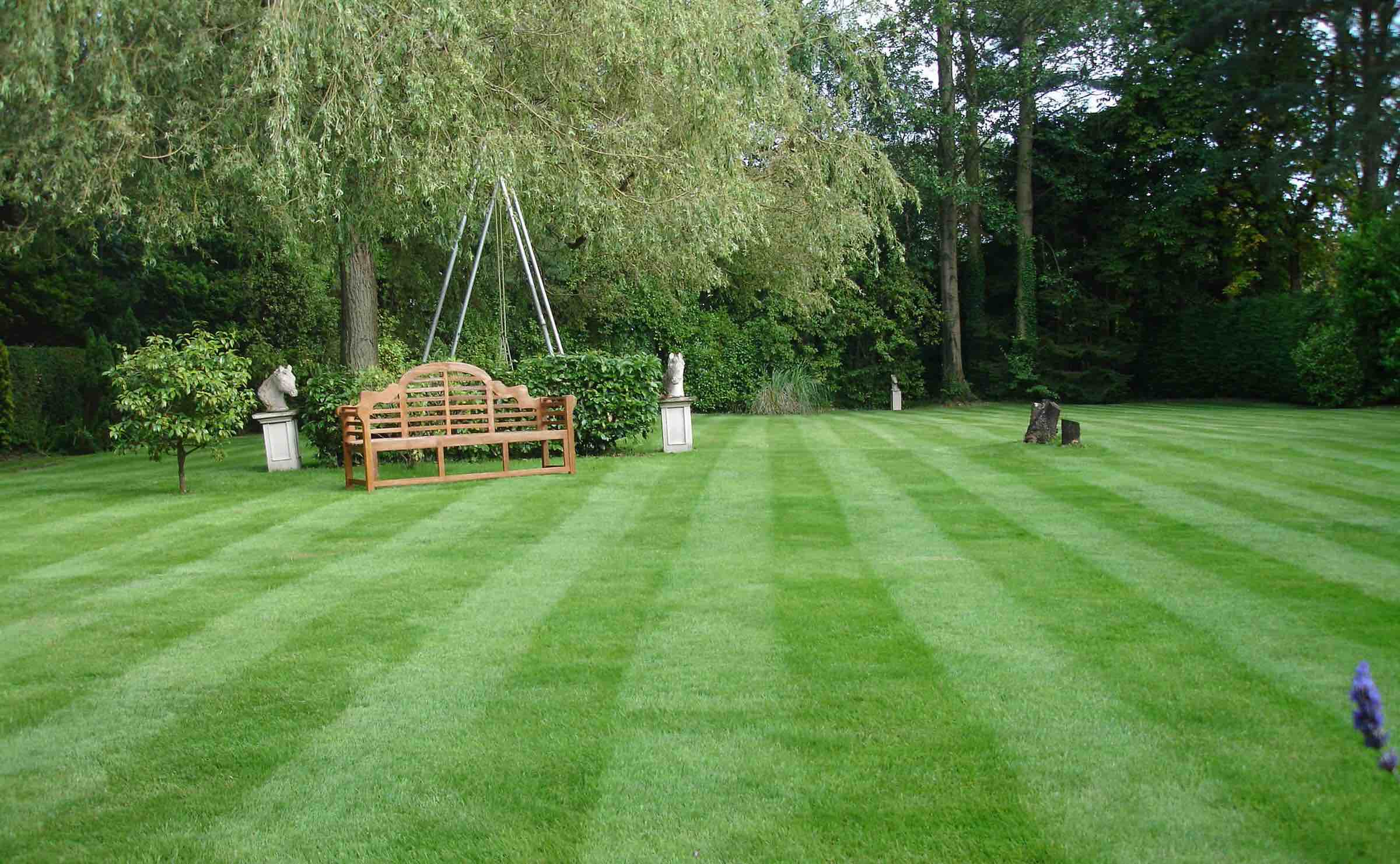 prepare your lawn for summer