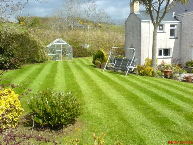 Beautiful striped lawn in Whitehead