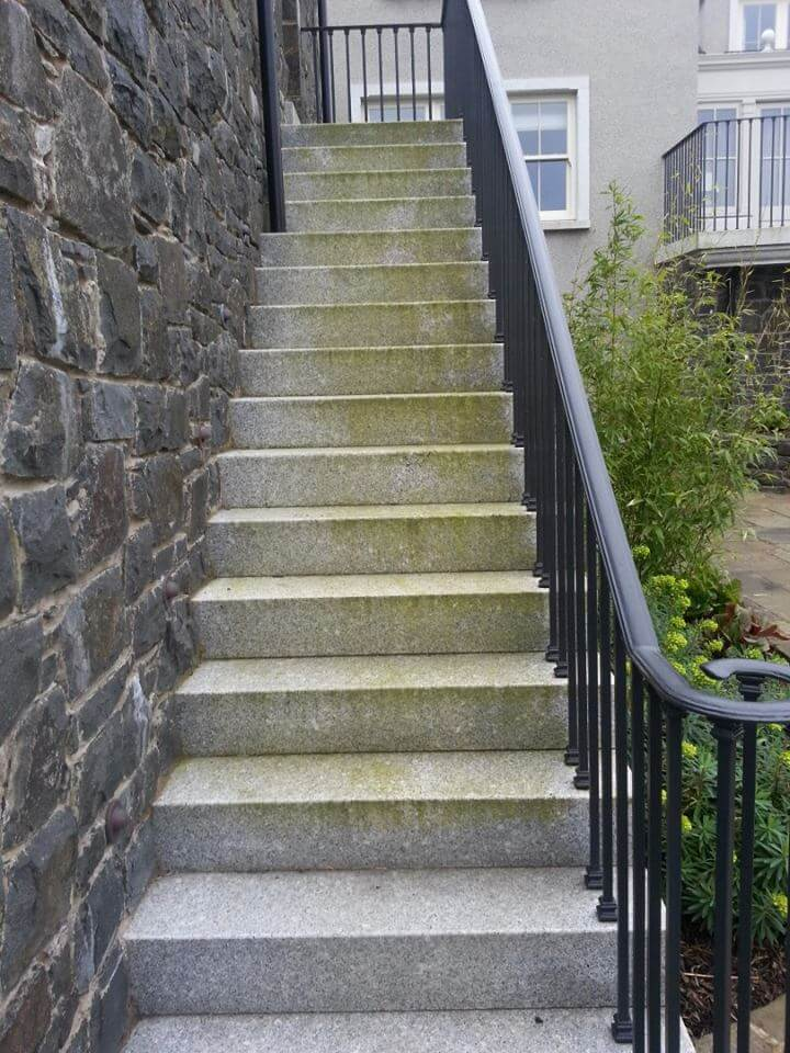 steps with algae before treatment