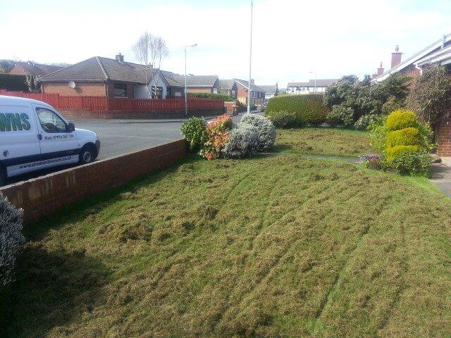 whitehead garden scarify