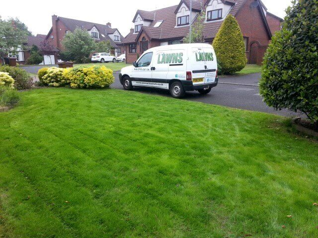 after spring lawn treatment