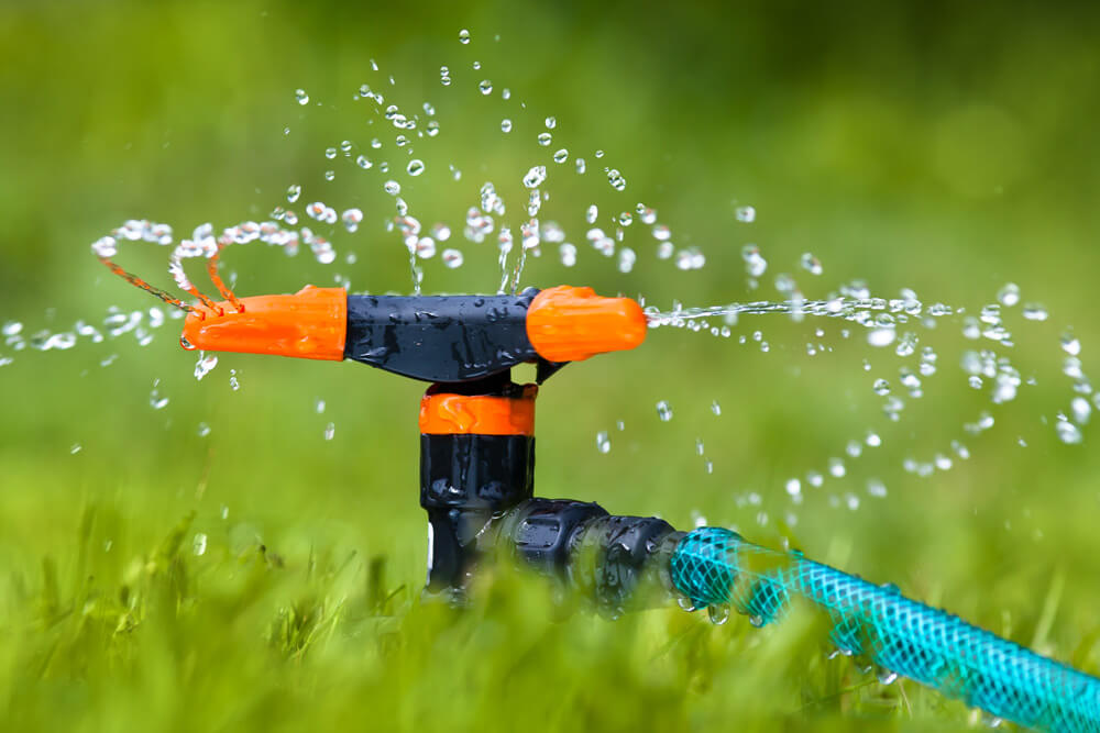 watering a lawn using a sprinkler