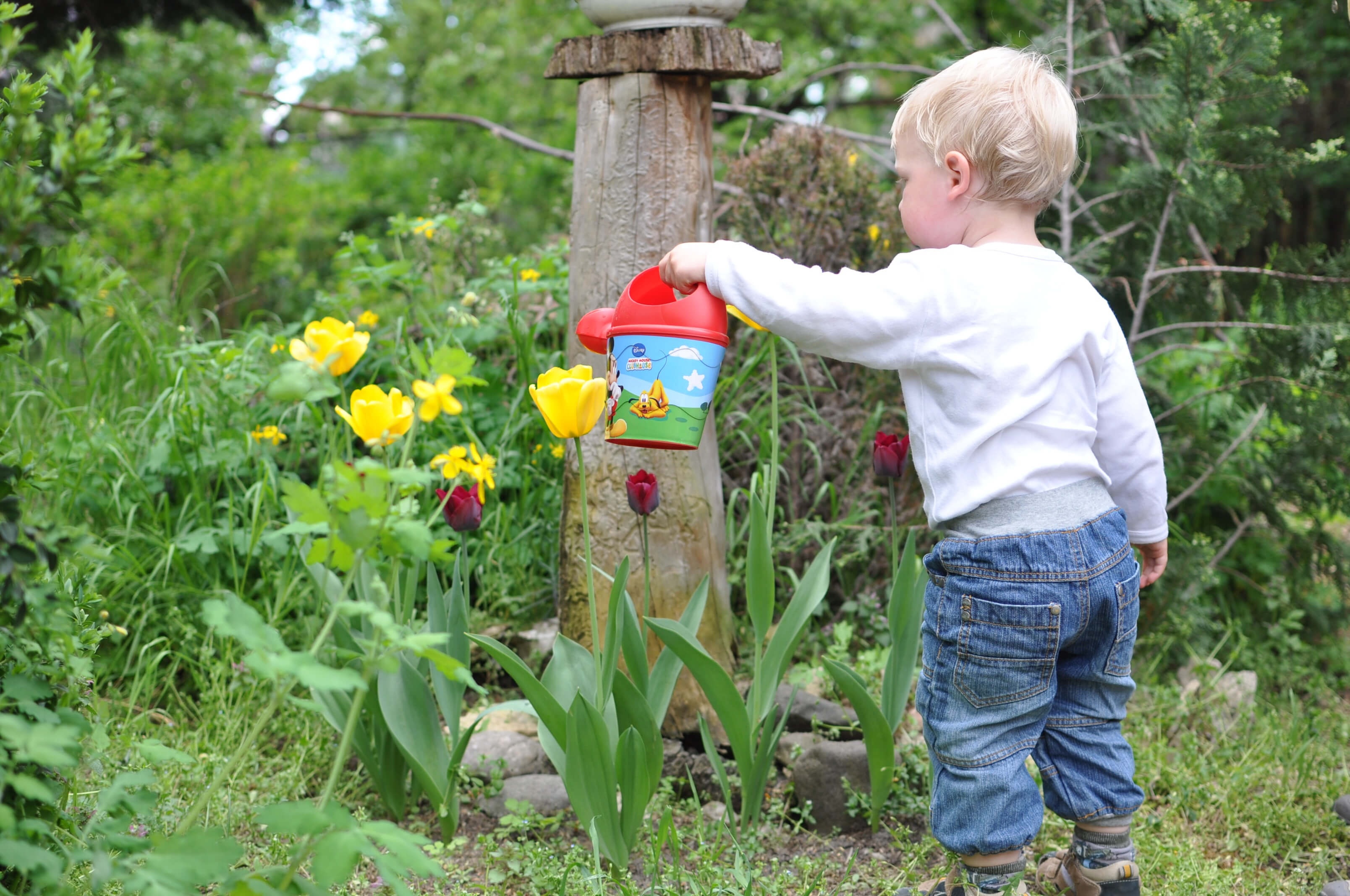 kids garden activities - child watering the plants